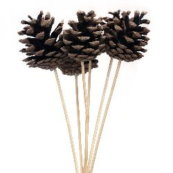 Decoration stick Wooden Cones 45 ~ 65 mm -6 pieces