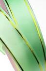 Лента панделка 18 мм зелена светла със злато -11 метра