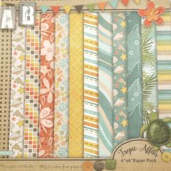 Дизайнерска хартия 160 гр за скрапбукинг, арт и крафт 6 inch (15.2x15.2 см) 12 дизайна x 2 листа Tropic affair