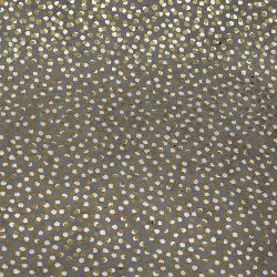 Hârtie nepaleză 60 g manual 50x76 cm Printed Random Dots - gri cu argint și aur