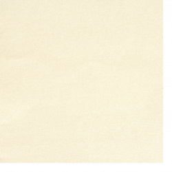Pearl paper 120 g one-sided A4 (21 / 29.7 cm) opal -1 piece