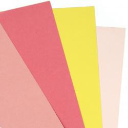 Carton 250 g / m2 bicolor neted A4 (21x 29,7 cm) Citrice Culori 6 culori -8 buc