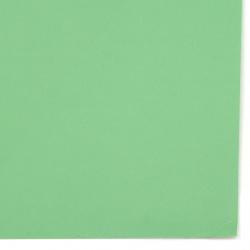Картон 200 гр/м2 двустранен гладък 52x38 см цвят зелен -1 брой