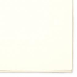 Картон за рисуване 160 гр 38x27 см -20 листа