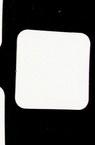 Etichetă pentru felicitare din carton  bere 34x34 mm -10 bucăți