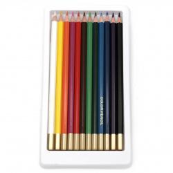 Set of color pencils WORISON -12 colors