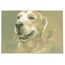 Комплект рисуване по номера 20x30 см -Голдън Ретрийвър msa0063