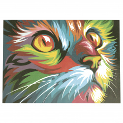 Set de desene cu numere de 30x40 cm - Cat-curcubeu Ms9259