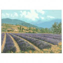 Set pictură după cifre 30x40 cm - Câmp de lavandă Ms9274