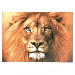 Комплект рисуване по номера 30x40 см -Лъв Ms7406