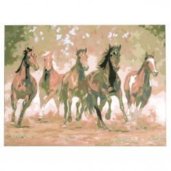 Set pictură după cifre 30x40 cm - Cai alergători Ms9058