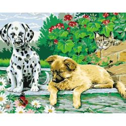 Комплект рисуване по номера 30x40 см - Нови приятели Ms9925