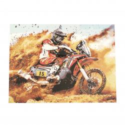 Комплект рисуване по номера 40x50 см -Мотористът Ms7653