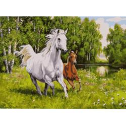 Комплект рисуване по номера 40x50 см -Кон и жребче в галоп Ms8443