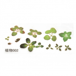 Самозалепващи стикери за вграждане в епоксидна смола за ръчно рисуван ефект с напластяване 125x53 мм водно растение -12 броя