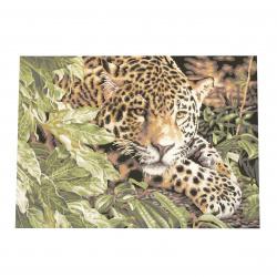 Комплект рисуване по номера 40x50 см - Леопард Ms8023