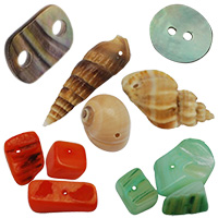Shells & Nacre Beads for Decoration, Jewelry, DIY, Gifts